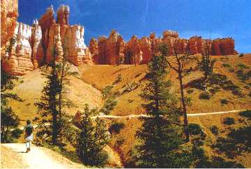 'Bryce Canyon Hiking' ... NO PICTURE ? ... PLEASE DROP ME A MESSAGE !